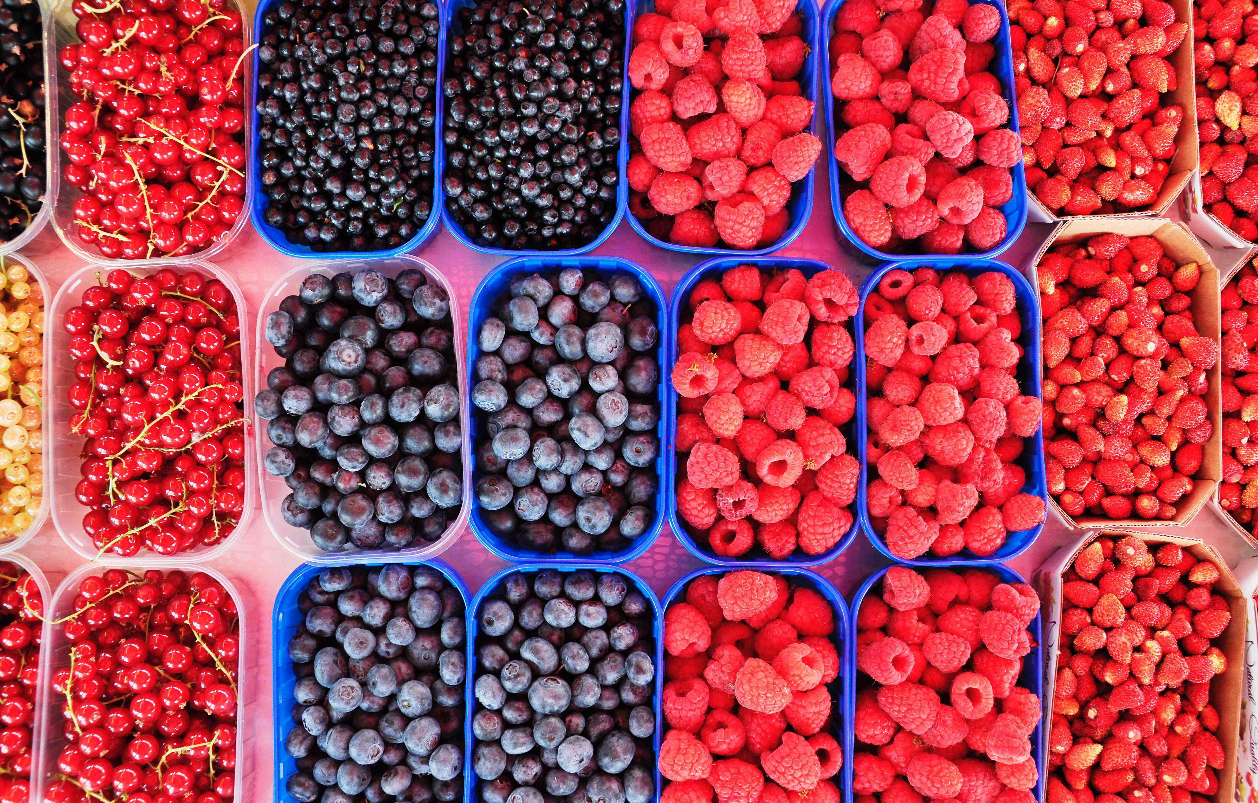 all sorts of berries: cranberries, raspberries, blue berries...
